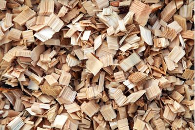 Picture of Fresh wood chips